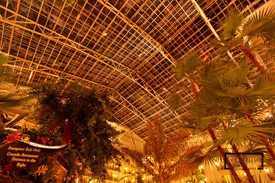 Gaylord Opryland Resort: Nashville Tennessee  Cascades Ceiling  © Copyright m2 Photography - Michael J. Mikkelson 2009. All Rights Reserved. Images can not be used without permission.