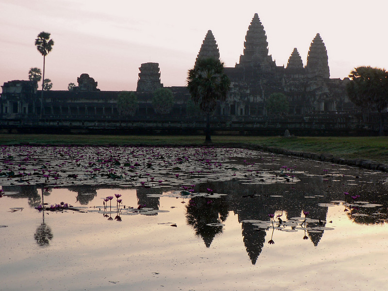 Just after sunrise.  Reflection  of the main towers in the lotus pond.