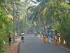 Village near Alappuzha
