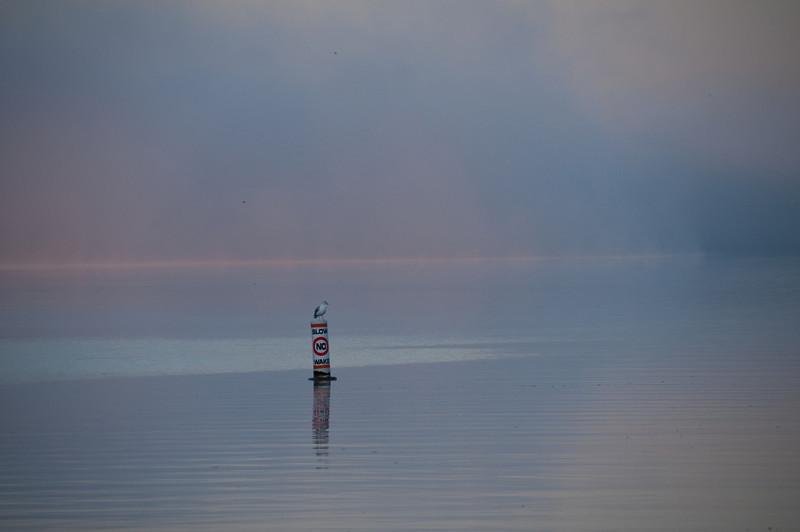 """Geneva Lake-1 """"Daybreak Mist"""""""