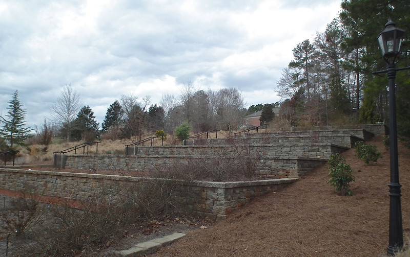 Rose Garden - State Botanical Garden of Georgia - Athens, GA  2/10/13<br /> These terraces were on the left and right side of the path (see previous photo).