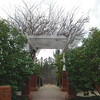 Garden Arbor - State Botanical Garden of Georgia - Athens, GA  2/10/13