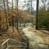 Path From the Parking Lot - State Botanical Garden of Georgia - Athens, GA  2/10/13
