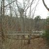Acorn Bridge Over to Woodland Walk - State Botanical Garden of Georgia - Athens, GA  2/10/13
