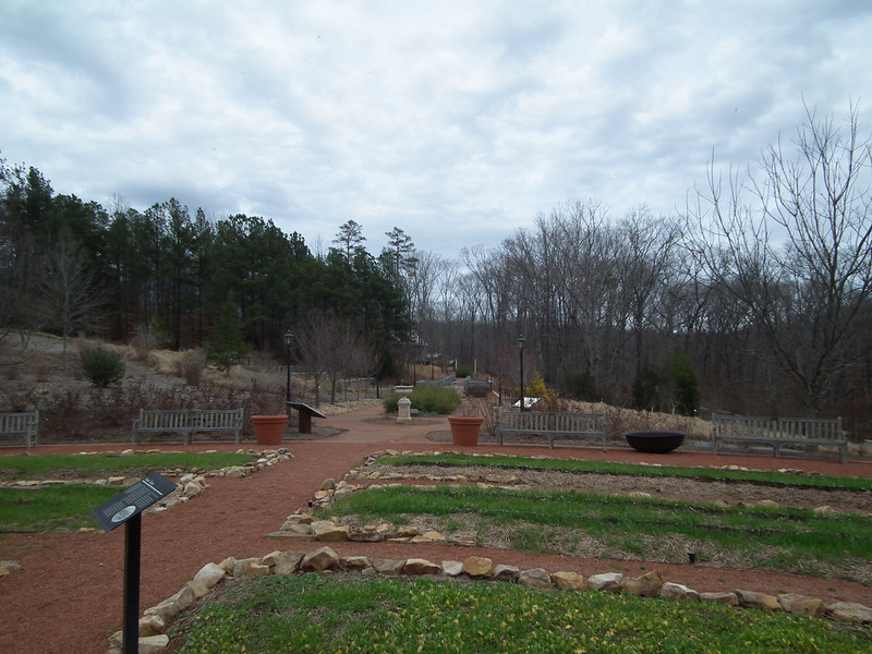 Terrace Garden - State Botanical Garden of Georgia - Athens, GA  2/10/13<br /> This area is surrounded by pecan trees.