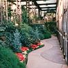Callaway Gardens, Pine Mountain, GA  12-25-96