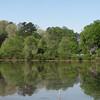 Views from Waterside Bench - Chattahoochee Nature Center, Roswell, GA