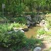 Garden Pond - Native Plant Botanical Garden - GA Perimeter College, Decatur, GA