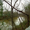 The Oconee River - North Oconee River Greenway Heritage Trail - Athens, GA  2/8/13