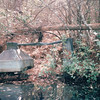 Old Still Seen on Boat Tour - Okefenokee Swamp National Wildlife Refuge - Waycross, GA  11-28-97
