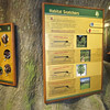 Lots of Educational Displays - Sandy Creek Nature Center - Athens, GA  2/9/13