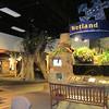 Wetlands Area - Sandy Creek Nature Center - Athens, GA  2/9/13