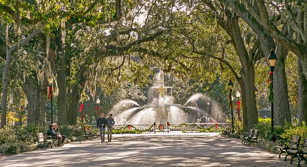 Savannah, December 2017