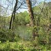 Simpsonwood Retreat - Norcross, GA