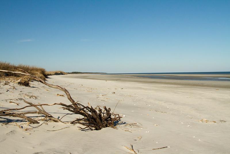 Sapelo Island-41