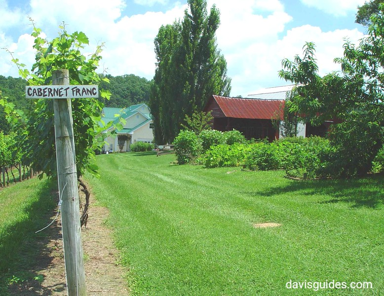 Touring North Georgia wineries, 2007