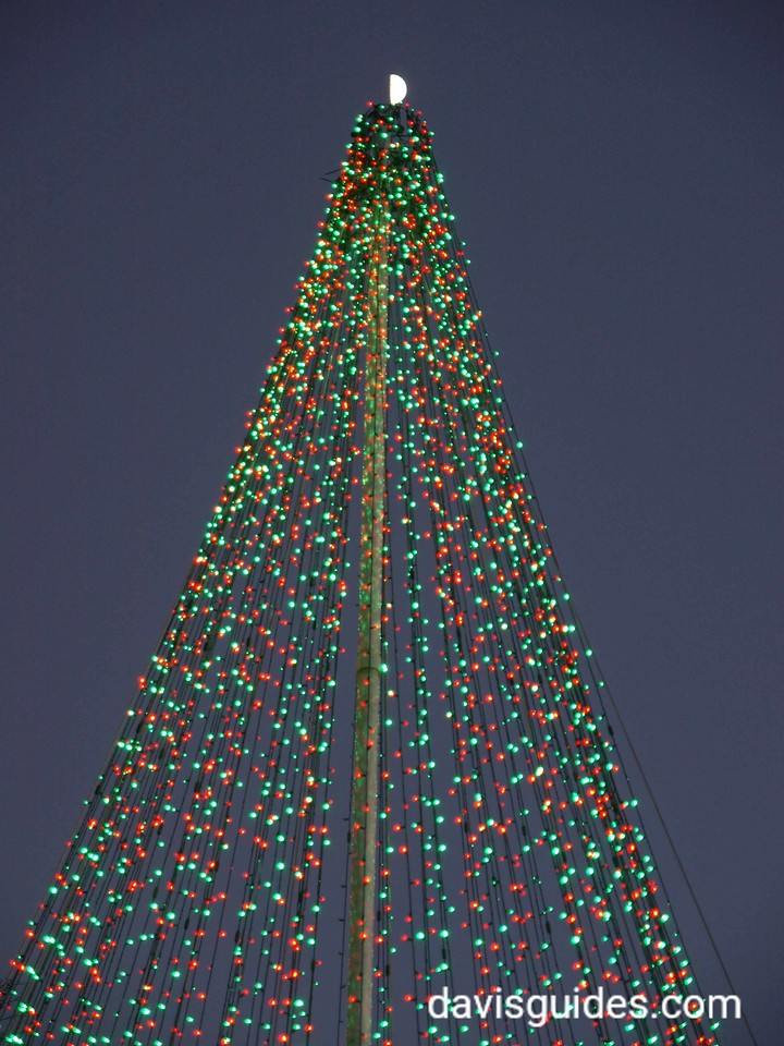 Half moon atop Christmas tree of lights, Atlanta Botanical Garden