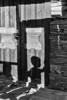 Framed shadow, Shenako, Tusheti, Gerogia