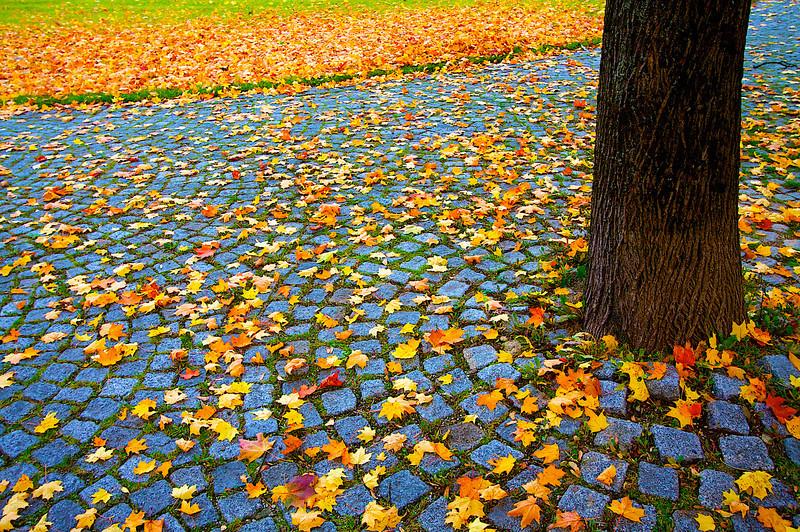 Autumn, Munchen