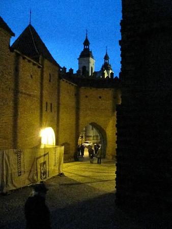 Germany Warsaw Nov 2009