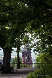 Freiburger Muenster thru the trees