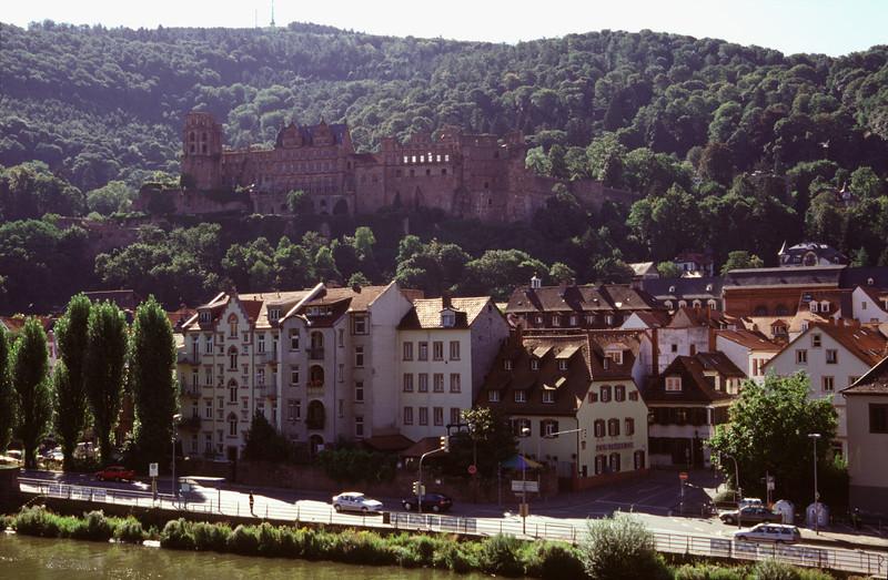 Heidelberg cityscape and castle