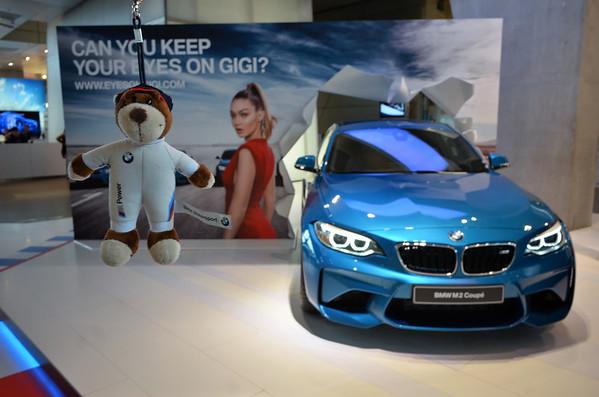 BMW Racing Bear's Travel Adventure