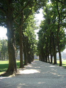 Trees line the path at the 30 hectacre Jubilee Park.
