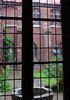 Kulturhist Museum, Stralsund, May 25, 2013. Courtyard through old glass.