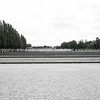 Guard house and horizontal lines of plot edges the tall trees and small figures of people on right in desaturated Dachau Concentration Camp