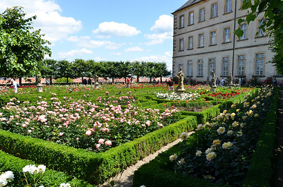 Rose garden of Bamberg