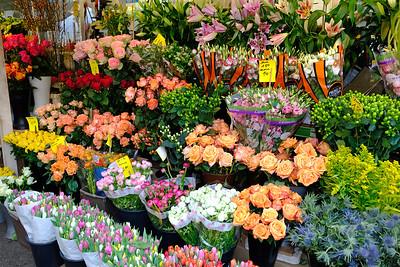 Dusseldorf flowers