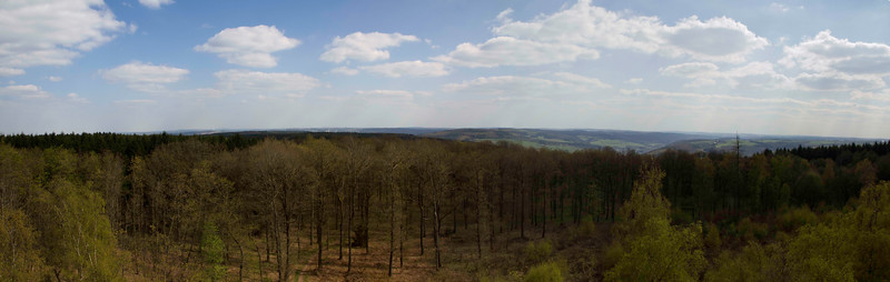 A series of 5 images, stitched together, taken at the Eifel National Park, Germany.