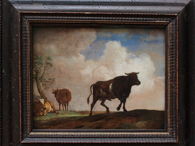 Die Steer by Paulus Potter 1649