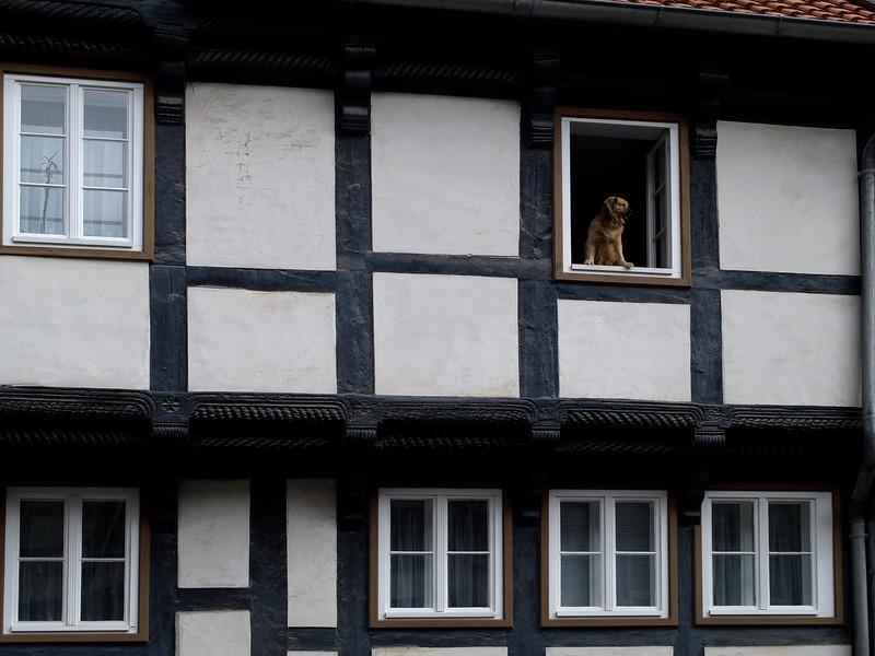 Quedlinburg 115 copy