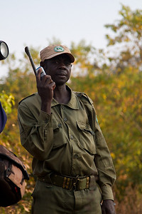 safari guide (DK) with a cellphone