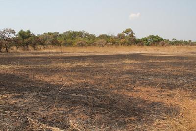 scorched plains