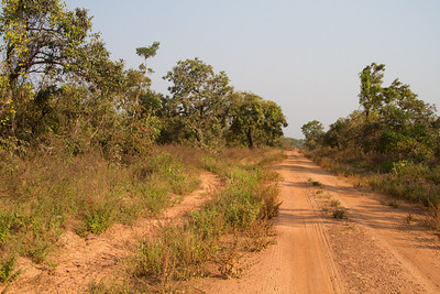 Mole National Park road