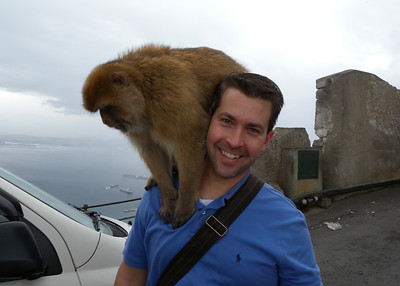 As I found out, they are pretty tame.  So that's what it is like to have a monkey on your back.