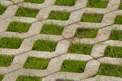 Grass and paver driveway.
