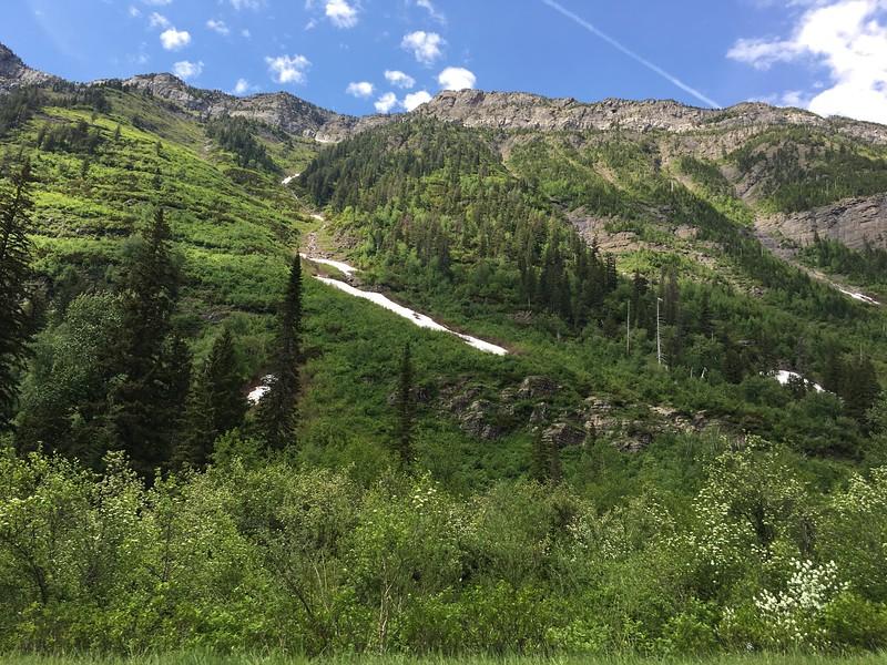 Avalanche chute, no bears