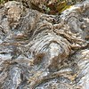 Stromatolite close-up
