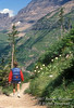 Model Released, Woman Hiking on Highline Trail, Glacier National Park, Montana, USA, North America