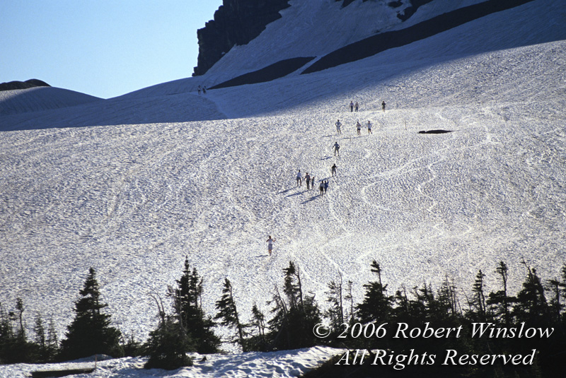 Hikers on Snow Field, Logan Pass, Glacier National Park, Montana, USA, North America