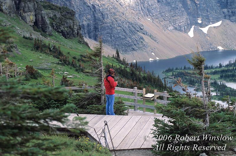 Tourist, Hidden Lake, Hidden Lake Overlook, Logan Pass Area, Glacier National Park, Montana, USA, North America