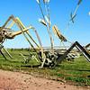 "North Dakota - The Enchanted Highway - <a href=""http://www.enchantedhighway.net/"">http://www.enchantedhighway.net/</a><br /> Grasshopper's Delight"