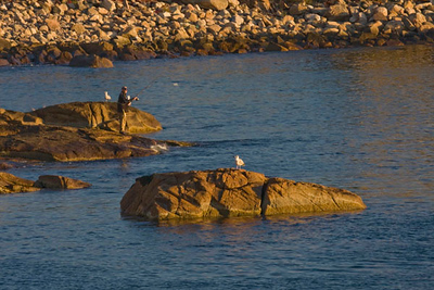 These rocks were covered with seagulls until this fisherman arrived. The two remaining gulls refused to leave.