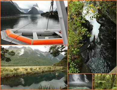 Day 2- Sunday, March 13th  Transfer to Milford Sound-Full Day Excursion