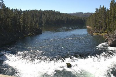 YELLOWSTONE  RIVER  A SHORT DISTANCE BEFORE  IT TUMBLES  OVER  THE UPPER  FALLS