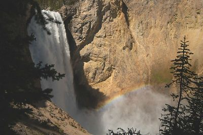 I took the trail to the edge to watch over 37,000 gallons  of water cascade over this grand waterfall every second. 308 ft. located in the Grand Canyon of the Yellowstone , this is the highest waterfall in Yellowstone  THIS IS THE TRAIL THAT DROPPED 600 FEET. NOT FOR ANYONE WITH HEALTH CONCERNS.  MYGREATEST  CONCERN IS  I WAS  HUNGRY!!
